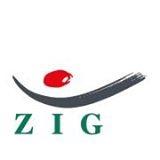 Clusterentwicklung_Logo ZIG