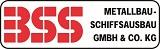 MINT-Frauen_Logo BSS